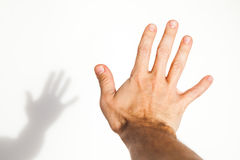 Male hand over white wall background. With soft shadow, close up photo with selective focus Stock Images
