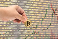 Male hand picking physical version of Bitcoin new virtual money. On binary code and stock trading graph background.Cryptocurrency investment concept Royalty Free Stock Photos
