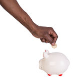 Male hand putting a coin into a piggy bank Stock Images
