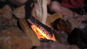Male hand putting firewood into campfire. Close-up of male hands putting dry firewood into campfire while relaxing in campsite during camping trip. Hiker man stock video footage