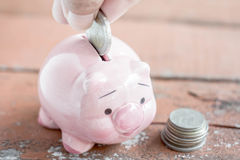 Male hand putting money In Piggy Bank, Saving money concept Stock Photos