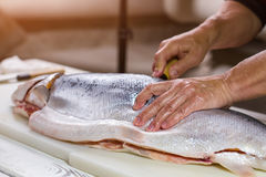 Male hand on raw fish. Stock Photography