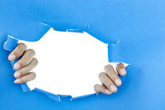 Male hand ripped blue paper on white background. Stock Photos