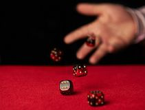 Male hand rolling dice. Male hand rolling five dice on red felt Stock Photography