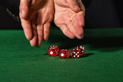 Male hand rolling five dice. On green felt Royalty Free Stock Images