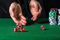 Male hand rolling five dice. On green felt Stock Photography