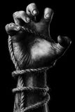 Male hand with rope. Conception aggression Stock Image