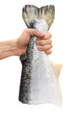 Male hand with salmon fish. Containing omega-3 Royalty Free Stock Photography