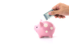 Male hand saving money in a piggybank. Male hand saving money in a piggybank on white background Stock Images