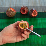 Male hand scooping out passionfruit against bamboo mats Stock Images