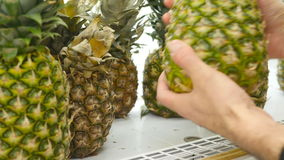 Male hand selecting pineapple at the supermarket. Man taking pineapple from counter in a grocery store. Guy selecting. Fresh fruit at produce department of shop stock footage