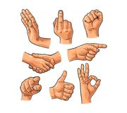 Male hand sign. Fist, Like, handshake, Ok, Pointing finger. Male hand sign. Fist, Like, handshake, Ok, Pointing, Stop, finger at viewer from front. Vector Royalty Free Stock Photography