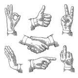 Male Hand sign. Like, Handshake, Ok, Stop, Middle finger, Victory. Male Hand sign. Like, Handshake, Ok, Stop, Middle finger up, Victory, Pointing gesture. Vector royalty free illustration