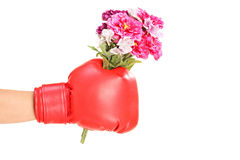 Male hand wearing boxing glove and holding a bunch of flowers Royalty Free Stock Photo
