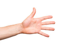 Male hand on white background Stock Photography
