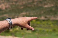 Male hand with wristwatch pointing. In the field outside Stock Photography