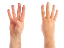 Male hands counting. Number 4 Royalty Free Stock Photo