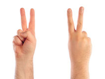 Male hands counting. Number 2 Stock Image