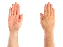 Male hands counting Stock Image