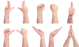 Male hands counting Stock Photos