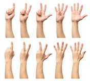 Male hands counting from one to five isolated Royalty Free Stock Image
