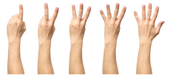 Male hands counting from one to five isolated Stock Photo