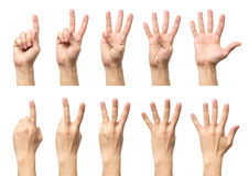 Male hands counting from one to five isolated Royalty Free Stock Images
