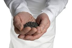 Male Hands Cupped Open w black dirt soil pebbles Stock Photography