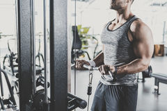 Male hands exercising on triceps in gym stock photography