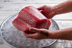 Male hands hold fish meat. Plate with ice and meat. Huge piece of tuna. Don't spoil the food Stock Image