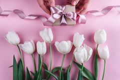 Male hands holding a gift with ribbons over pink background with white tulips. Greeting card or wedding invitation. Flat lay, top view, copy space royalty free stock photo