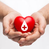 Male hands holding red heart with donor sign. Healthcare, medicine and blood donation concept - male hands holding red heart with donor sign stock photography