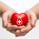 Male hands holding red heart with donor sign Stock Image