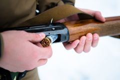 Male hands hunter inserted cartridge 12 caliber rifle on a backg. Round of pine forest in winter Royalty Free Stock Photography
