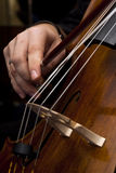 Male hands playing cello. Male hands playing old cello Royalty Free Stock Photography