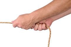 Male hands pulling on rope. In a tug of war on whiteq royalty free stock photos