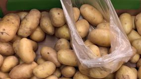 Male hands put potatoes. In the transparent plastic packing bag. Shopping - man chooses nice potatoes adds to the package stock video footage