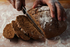 Male hands slicing fresh bread. Stock Image