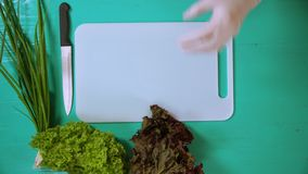 Chef serves plants on a turquoise table. Male hands in white gloves prepare food for cutting. man puts green bunches by white board stock footage