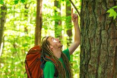 Male hiker with backpack pointing at overhead. In the forest Stock Images