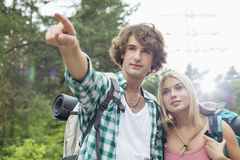 Male hiker showing something to woman in forest Stock Photos