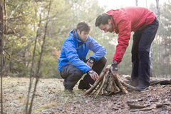 Male hikers arranging firewood in forest Stock Photos