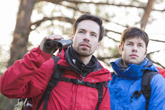 Male hikers with binoculars in forest Stock Photography