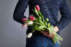 A Man holding bunch of tulips royalty free stock image