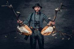 Male holds a skull of a deer. The bearded hunter male holds a two deer`s skull Royalty Free Stock Images