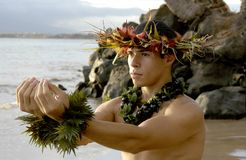 Male hula dancer`s dramatic expression. This male hula dancer poses as he dances a traditional hula dance stock photography