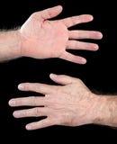 Male human hand Royalty Free Stock Photo