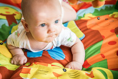 Male infant playing. On his soft colorful blanket with jungle animals Stock Images