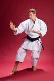 Male Karate Instructor. A male black belt karate instructor posing stock photography