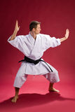 Male in karate kimono Royalty Free Stock Photos